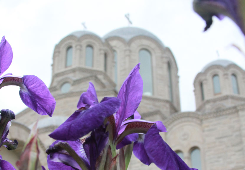 View the Holy Week Schedule of Services at St. Sava in Merrillville